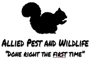 Allied Pest and Wildlife